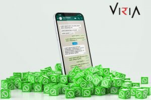 best WhatsApp Marketing Services - VIRIA